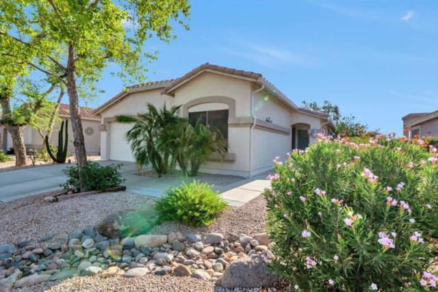 5023 S Lantana Lane, Gilbert, AZ 85298 (MLS #5795275) :: The Jesse Herfel Real Estate Group