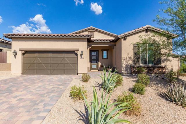 12031 S 186TH Drive, Goodyear, AZ 85338 (MLS #5795284) :: My Home Group