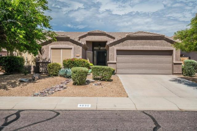 4630 E Briles Road, Phoenix, AZ 85050 (MLS #5795295) :: Phoenix Property Group