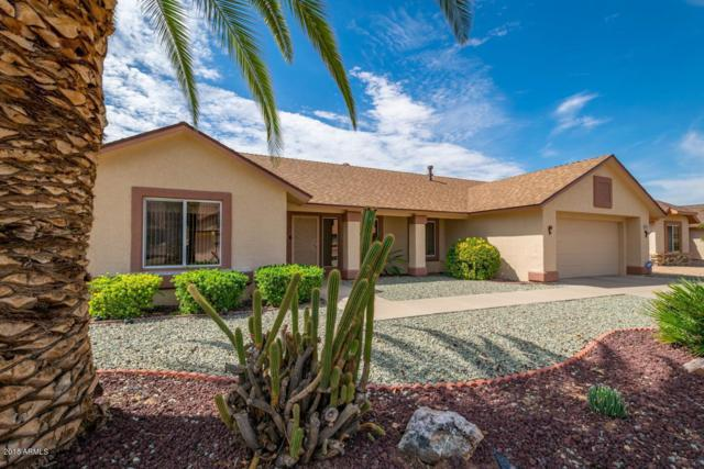 14941 W Alpaca Drive, Sun City West, AZ 85375 (MLS #5795304) :: The Daniel Montez Real Estate Group
