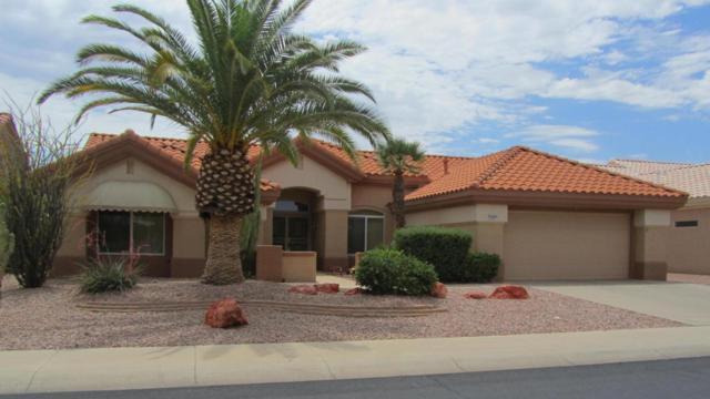 14407 W Blackgold Lane, Sun City West, AZ 85375 (MLS #5795310) :: Phoenix Property Group