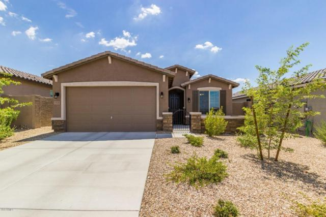 17439 W Eagle Court, Goodyear, AZ 85338 (MLS #5795313) :: RE/MAX Excalibur