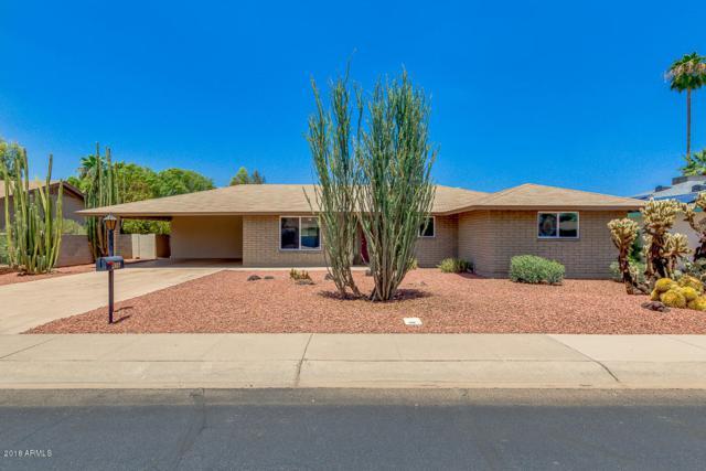 456 W Jasper Drive, Chandler, AZ 85225 (MLS #5795333) :: The Jesse Herfel Real Estate Group