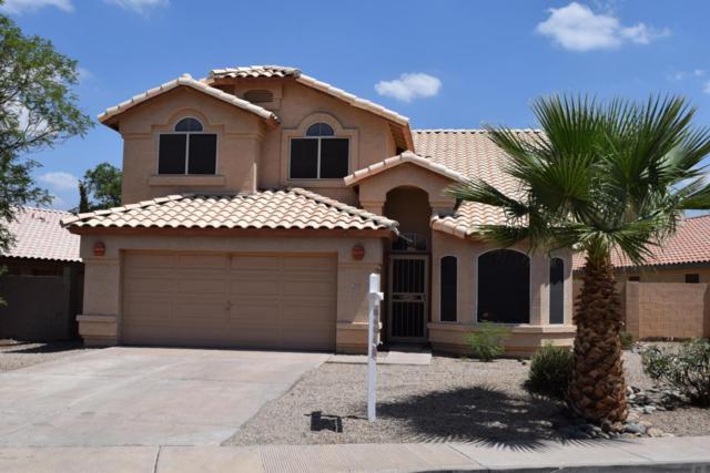 3908 E Douglas Loop, Gilbert, AZ 85234 (MLS #5795347) :: The Jesse Herfel Real Estate Group