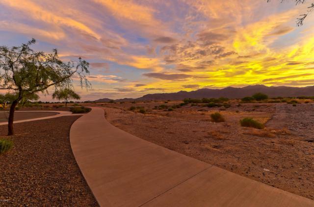 18225 W El Caminito Drive, Waddell, AZ 85355 (MLS #5795351) :: Kelly Cook Real Estate Group