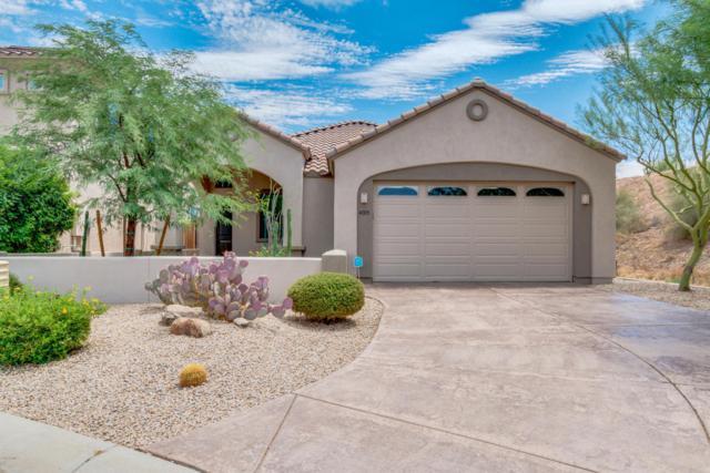 4005 E Crimson Terrace, Cave Creek, AZ 85331 (MLS #5795372) :: The Laughton Team