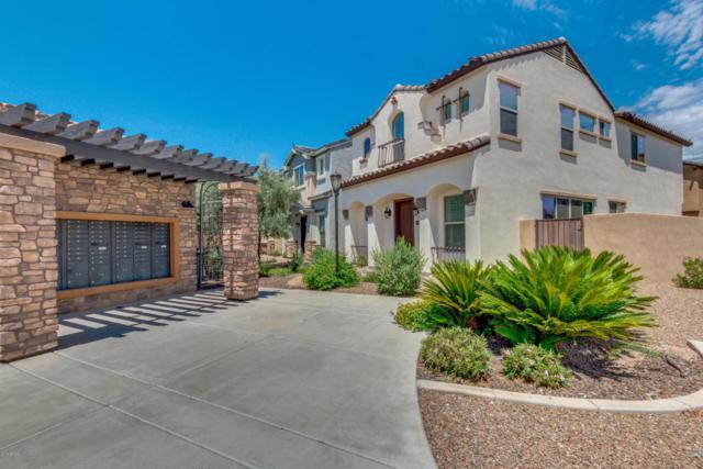 2030 E Heartwood Lane, Phoenix, AZ 85022 (MLS #5795377) :: RE/MAX Excalibur