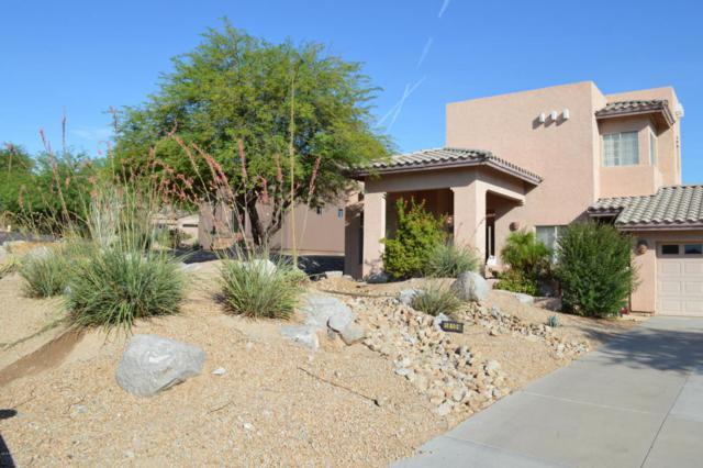 18109 W San Esteban Drive, Goodyear, AZ 85338 (MLS #5795420) :: My Home Group