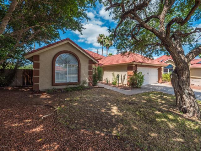 725 W Rawhide Avenue, Gilbert, AZ 85233 (MLS #5795432) :: The Jesse Herfel Real Estate Group