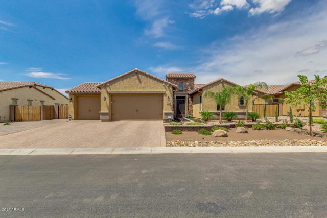 2864 E Bellflower Drive, Gilbert, AZ 85298 (MLS #5795467) :: The Jesse Herfel Real Estate Group