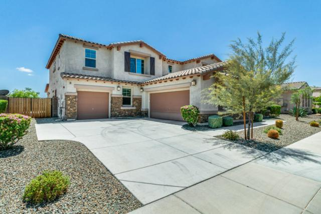 13367 W Jesse Red Drive, Peoria, AZ 85383 (MLS #5795469) :: The Laughton Team