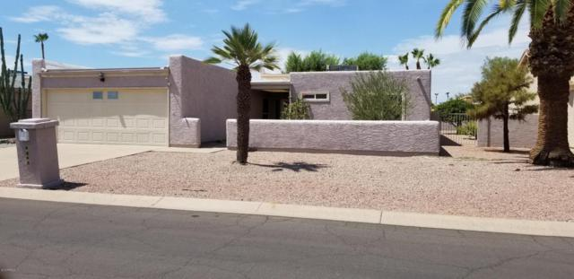 9648 E Indiana Avenue, Sun Lakes, AZ 85248 (MLS #5795472) :: The W Group