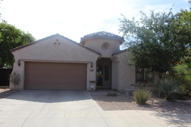 4664 S Hassett, Mesa, AZ 85212 (MLS #5795474) :: The Jesse Herfel Real Estate Group
