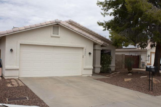 19006 N 11TH Drive, Phoenix, AZ 85027 (MLS #5795506) :: RE/MAX Excalibur