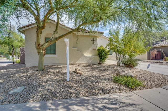 2078 E Glacier Place, Chandler, AZ 85249 (MLS #5795507) :: The Jesse Herfel Real Estate Group