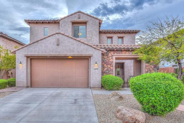 27618 N 90TH Lane, Peoria, AZ 85383 (MLS #5795512) :: The Laughton Team