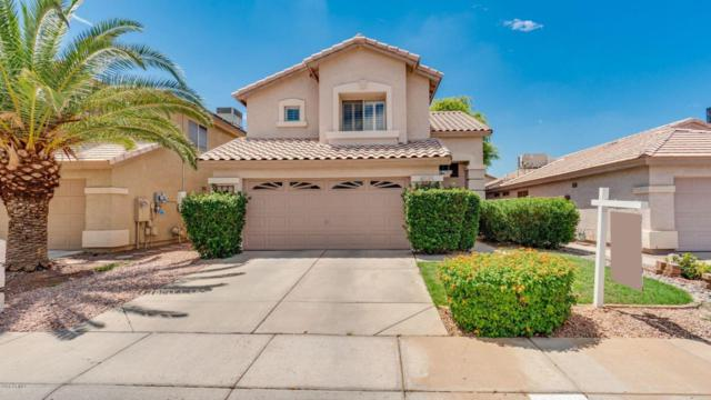 4035 E Meadow Drive, Phoenix, AZ 85032 (MLS #5795521) :: RE/MAX Excalibur