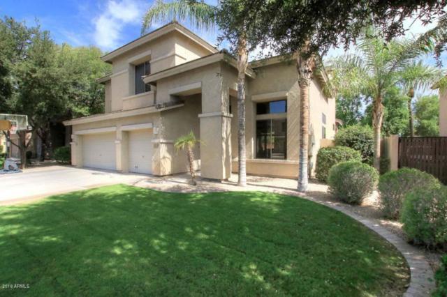 964 E Aquarius Place, Chandler, AZ 85249 (MLS #5795526) :: The Jesse Herfel Real Estate Group