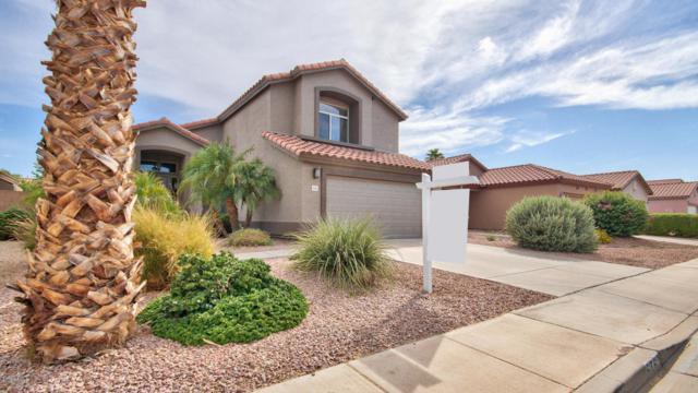 6763 W Ivanhoe Street, Chandler, AZ 85226 (MLS #5795535) :: The Jesse Herfel Real Estate Group