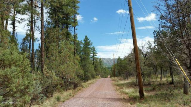 Lot 25K Verde Glen, Payson, AZ 85541 (MLS #5795543) :: The Jesse Herfel Real Estate Group