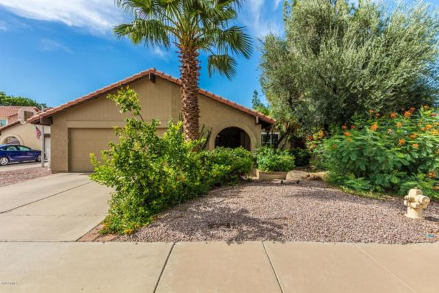 2302 W Lompoc Circle, Mesa, AZ 85202 (MLS #5795548) :: The Jesse Herfel Real Estate Group