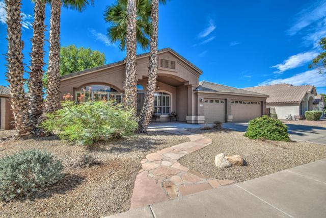 1517 E Erie Street, Gilbert, AZ 85295 (MLS #5795549) :: The Jesse Herfel Real Estate Group