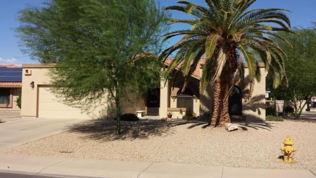 19231 N 92ND Avenue, Peoria, AZ 85382 (MLS #5795628) :: The Carin Nguyen Team