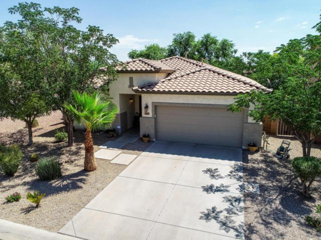 39079 N Luke Lane, San Tan Valley, AZ 85140 (MLS #5795637) :: Group 46:10