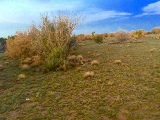 Park Show Low Unit 5 Lot #, Concho, AZ 85924 (MLS #5795645) :: The Garcia Group @ My Home Group