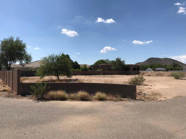 7946 W Avenida Del Sol, Peoria, AZ 85383 (MLS #5795711) :: Riddle Realty