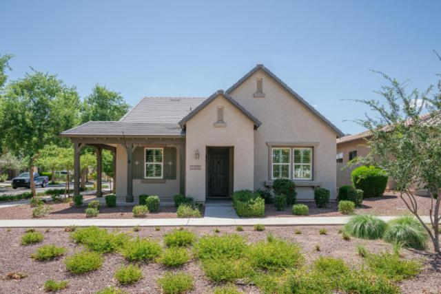 2410 N Legend Trail, Buckeye, AZ 85396 (MLS #5795741) :: The Sweet Group