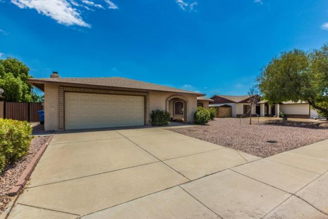 3307 W Taro Lane, Phoenix, AZ 85027 (MLS #5795787) :: Gilbert Arizona Realty