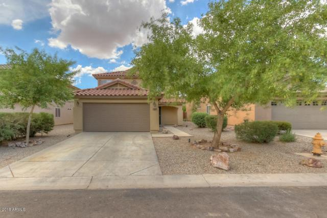 1429 E Rosebud Drive, San Tan Valley, AZ 85143 (MLS #5795806) :: Group 46:10