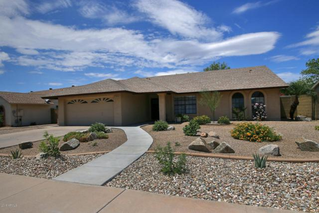 7402 W Windrose Drive, Peoria, AZ 85381 (MLS #5795811) :: Riddle Realty