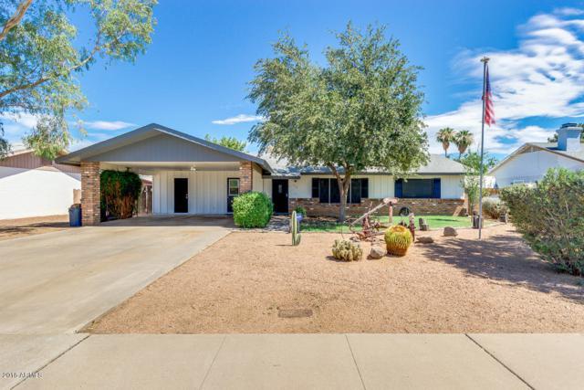 636 E Kael Circle, Mesa, AZ 85203 (MLS #5795814) :: Group 46:10