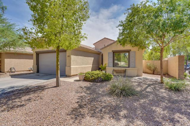 4729 E Cloudburst Drive, Gilbert, AZ 85297 (MLS #5795825) :: Group 46:10