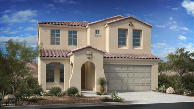 9534 W Cashman Drive, Peoria, AZ 85383 (MLS #5795832) :: Keller Williams Realty Phoenix