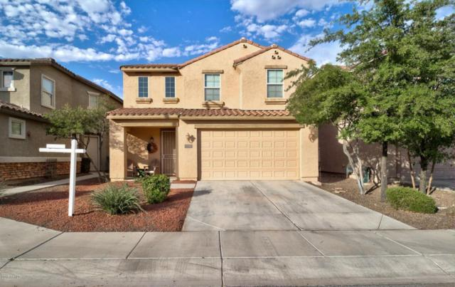 31269 N Cavalier Drive, San Tan Valley, AZ 85143 (MLS #5795855) :: Group 46:10