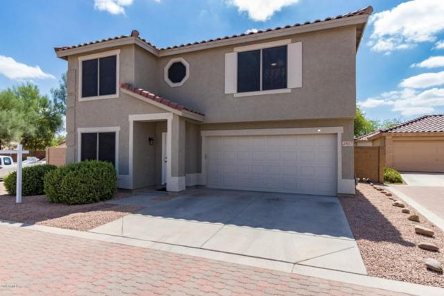 2857 E Cherry Hills Drive, Chandler, AZ 85249 (MLS #5795875) :: Lux Home Group at  Keller Williams Realty Phoenix