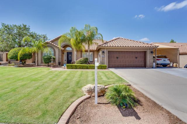 6415 E Presidio Street, Mesa, AZ 85215 (MLS #5795885) :: Group 46:10