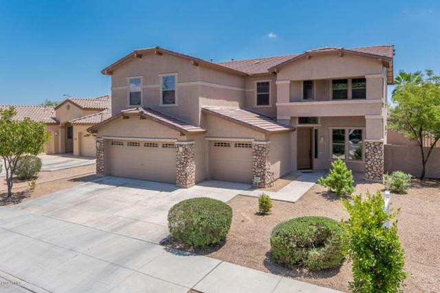 13739 W Banff Lane, Surprise, AZ 85379 (MLS #5795897) :: Riddle Realty