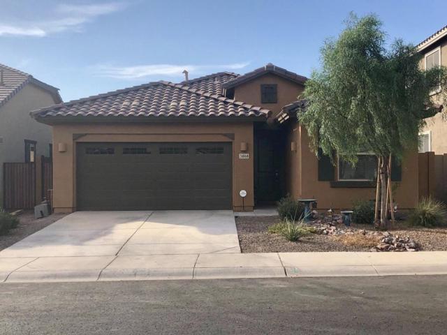 3868 E Narrowleaf Drive, Gilbert, AZ 85298 (MLS #5795909) :: Arizona Best Real Estate