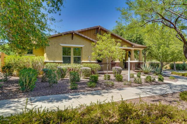 20996 W Lost Creek Drive, Buckeye, AZ 85396 (MLS #5795929) :: The Sweet Group