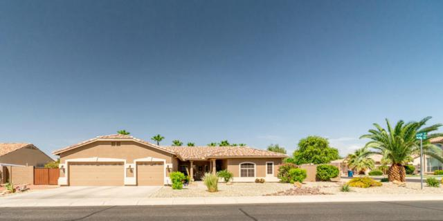 5414 N Pajaro Court, Litchfield Park, AZ 85340 (MLS #5795975) :: My Home Group