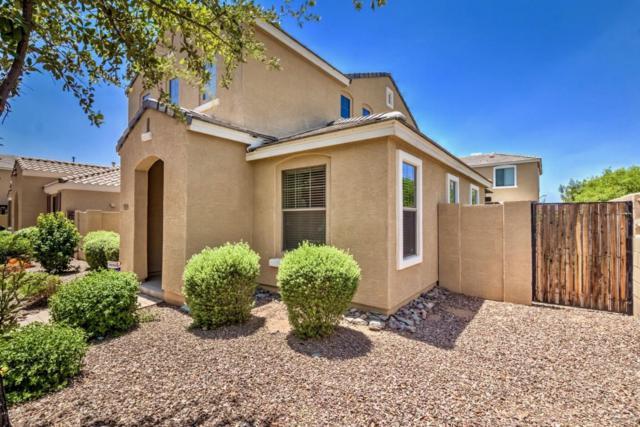2750 E Megan Street, Gilbert, AZ 85295 (MLS #5795979) :: Lux Home Group at  Keller Williams Realty Phoenix