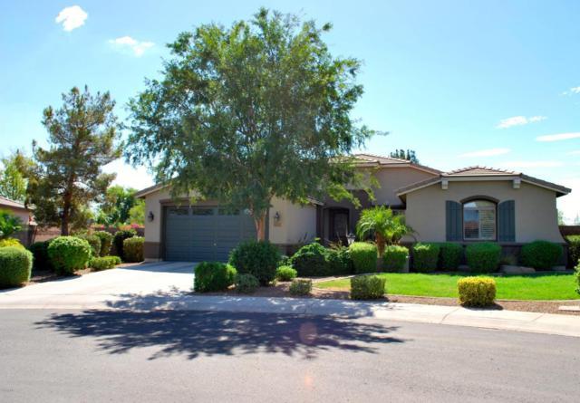 4730 S Platinum Court, Chandler, AZ 85248 (MLS #5795980) :: Lux Home Group at  Keller Williams Realty Phoenix