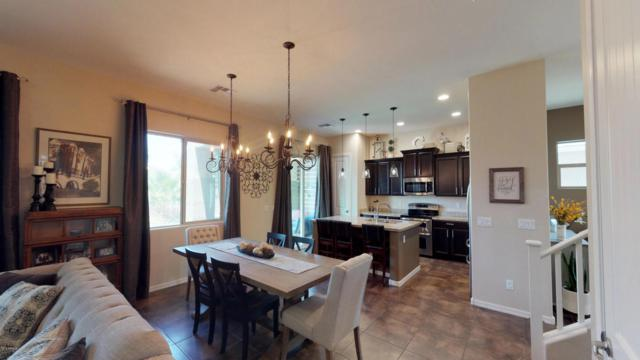 1522 E Hummingbird Way, Gilbert, AZ 85297 (MLS #5795989) :: Lux Home Group at  Keller Williams Realty Phoenix
