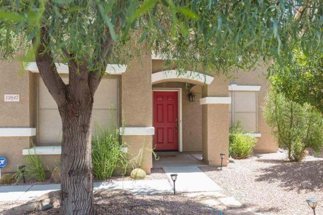 12647 N 150TH Court, Surprise, AZ 85379 (MLS #5796004) :: Phoenix Property Group