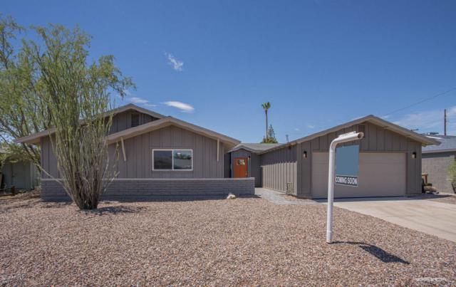 6425 E Sheridan Street, Scottsdale, AZ 85257 (MLS #5796023) :: Lux Home Group at  Keller Williams Realty Phoenix