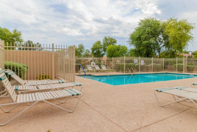 947 S Tucana Lane, Gilbert, AZ 85296 (MLS #5796042) :: Lux Home Group at  Keller Williams Realty Phoenix